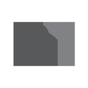 menntamalastofnun-logo